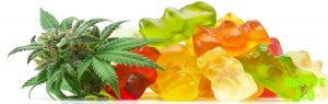 Why Use CBD Broad Spectrum Infused Gummies